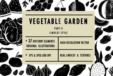 Vegetable Garden II