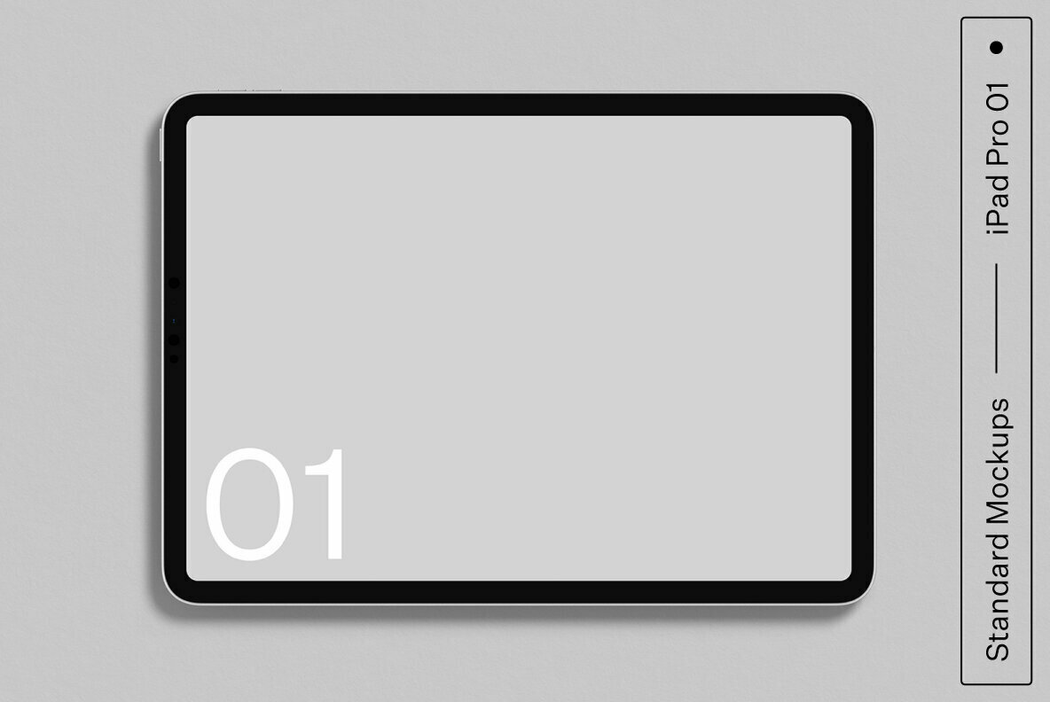iPad Pro 01 Standard Mockup