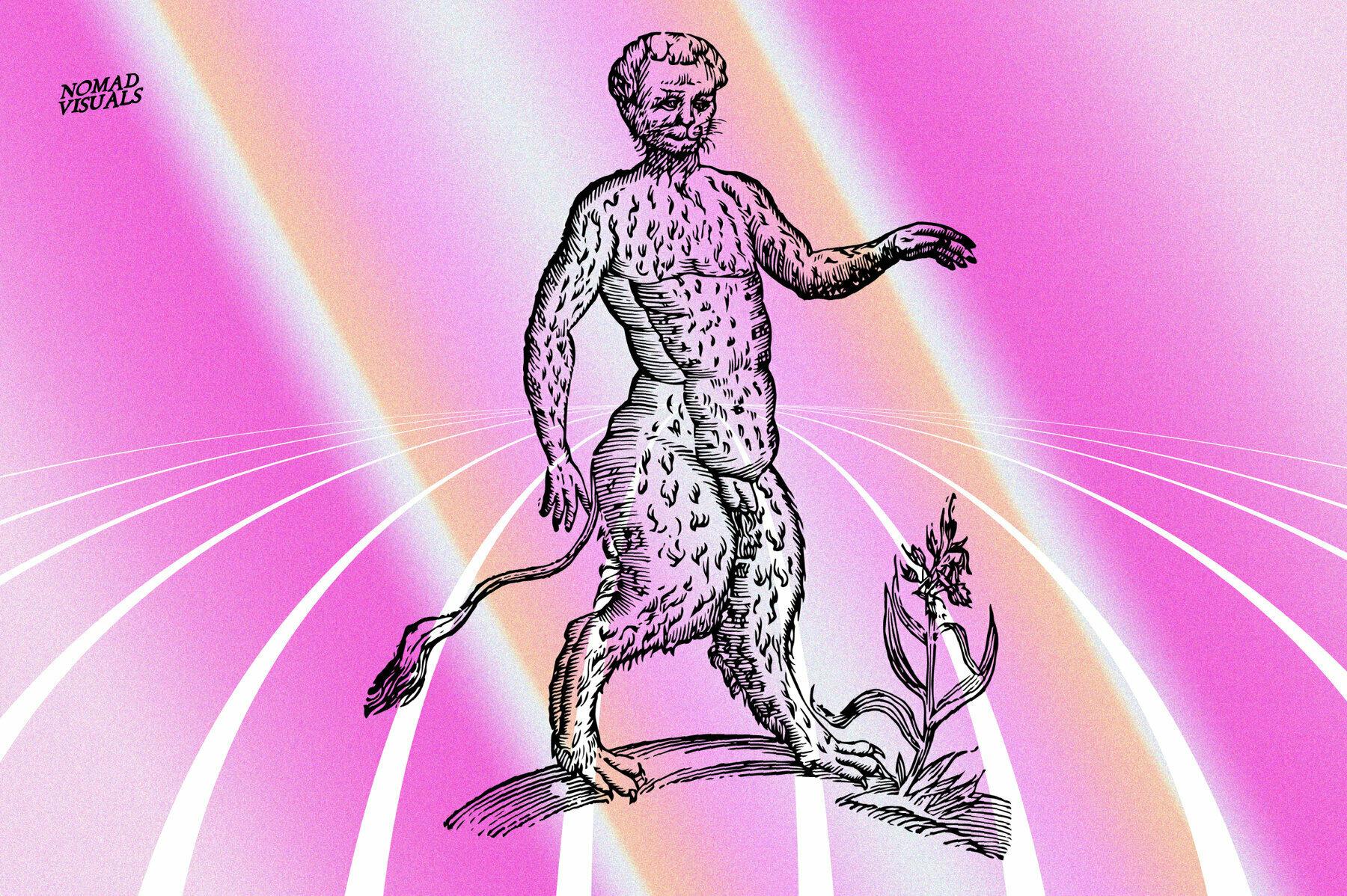 Prodigiorum Naturae   Illustrations