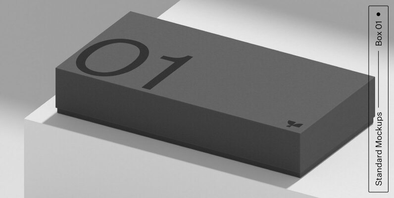 Box 01 Standard Mockup