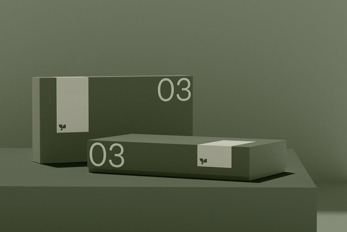 Box 03 Standard Mockup
