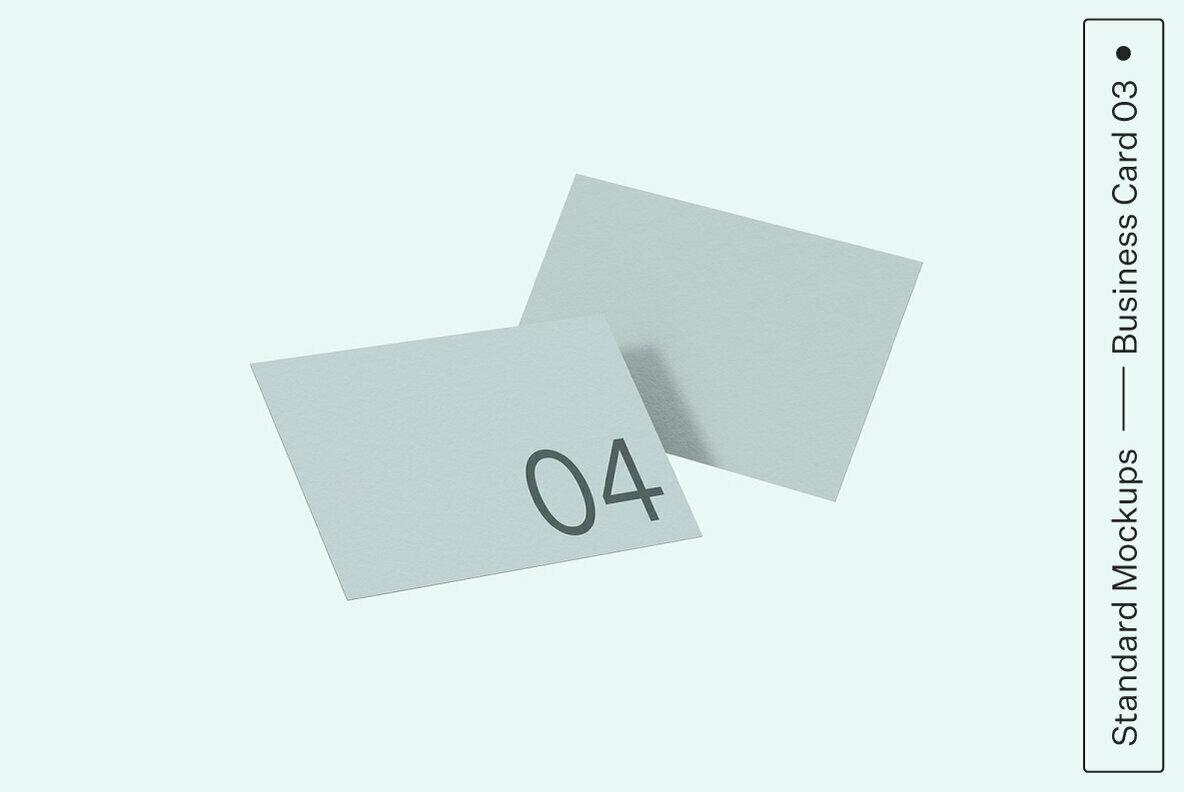 Business Card 04 Standard Mockup