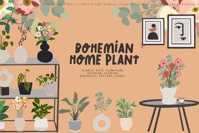 BOHEMIAN HOME PLANT