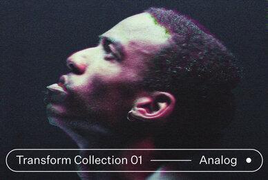 Transform Collection 01   Analog