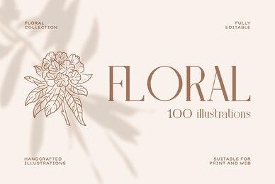 Floral Illustration Set
