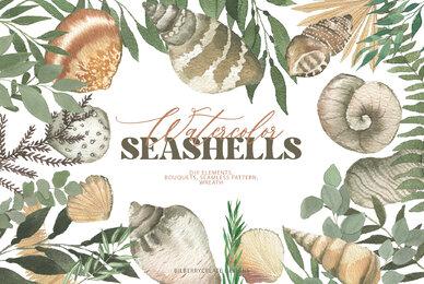 Watercolor Seashells Art Set