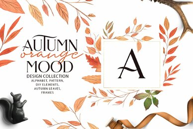 Autumn Orange Mood