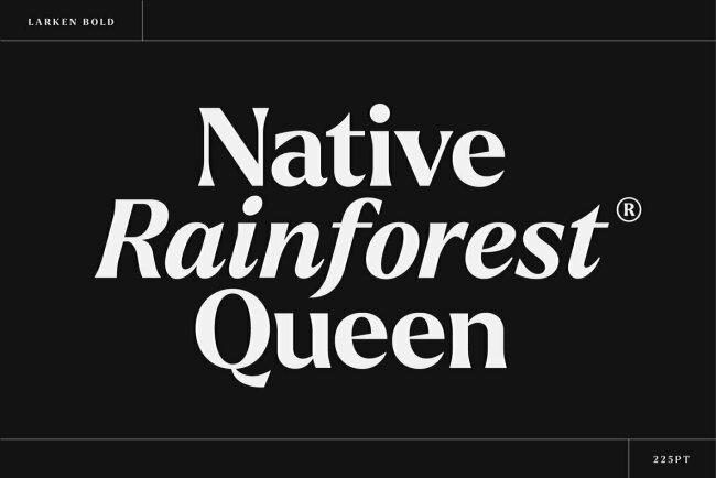 Larken: A Smooth, Nature-Inspired Serif Family from Ellen Luff