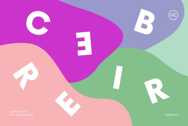 Cerebri Sans: An Intellectual Approach To Improve The Reader's Experience