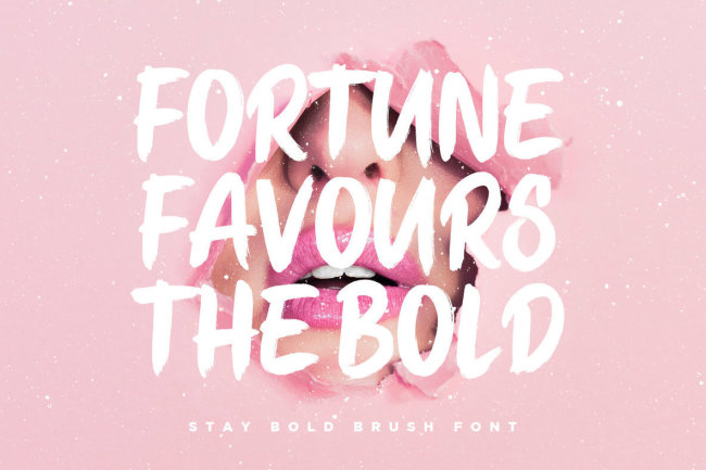 A Strong, Confident Brush Script: Stay Bold From Set Sail Studios