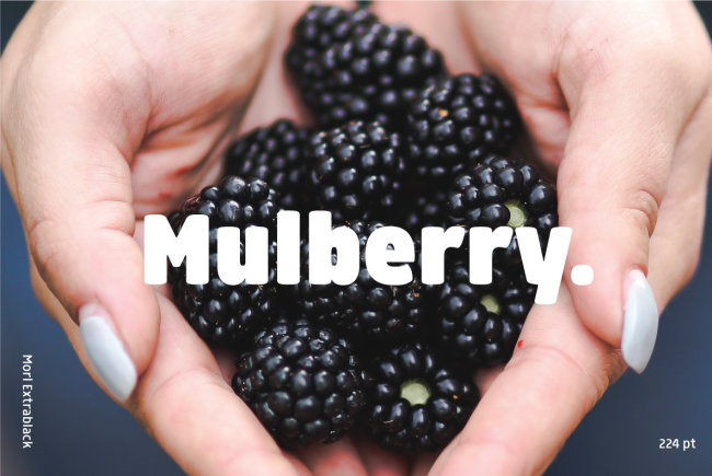 A Friendly Sans Serif Family From Typesketchbook: Morl