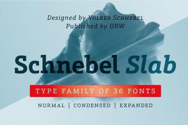 A Superfamily Of Contemporary Slab Serifs: Schnebel Slab