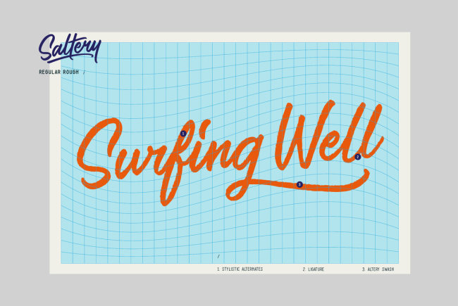 A Sweet Cursive Script From Pana Type & Studio: Saltery
