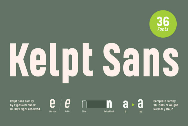 Newsletter Feature: Everything You Need to Know About OpenType-SVG Fonts + New Fonts