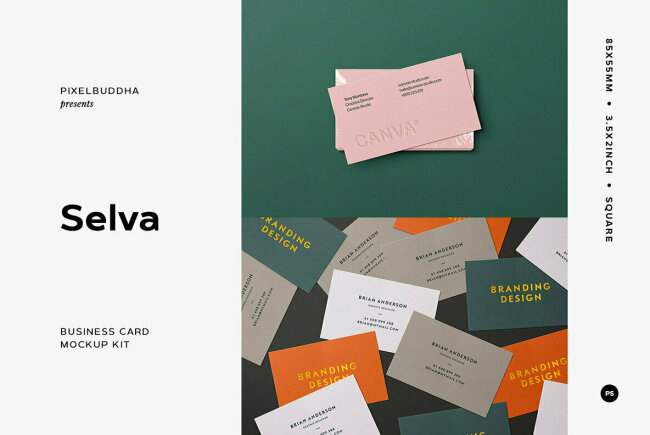 Selva Business Card Mockup Kit, New From Pixelbuddha