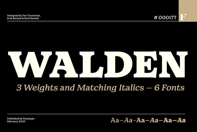 Newsletter Feature: Download New Fonts, Graphics, Photos & Much More…