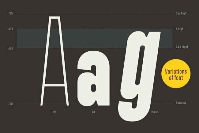 Newsletter Feature: The Best New Fonts at The Best Prices