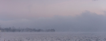 Misty evening at the lake