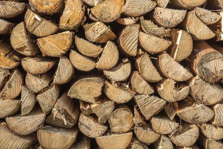 Staple of wood