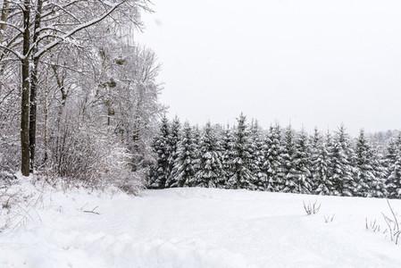 Wintertime   Landscape
