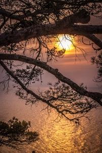 Sunrise at the ocean