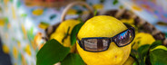 Lemon with sun glass