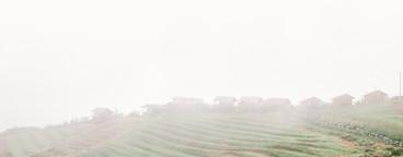 Beautiful Foggy