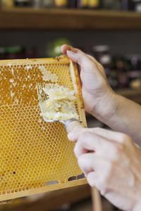 Beekeeping 09