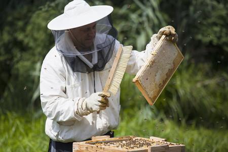 Beekeeping 11