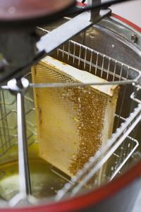 Beekeeping 17