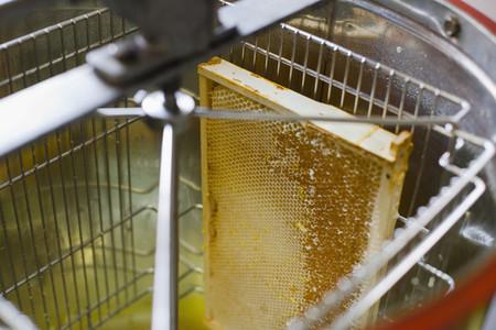 Beekeeping 23