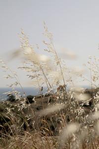 Cyprus Scenics 18