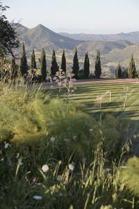 Cyprus Scenics 24