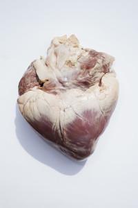 Adventurous Heart 03