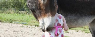 A Girl On A Farm  01