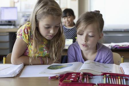 Elementary Education  12