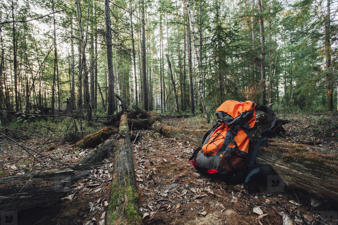 Weekend Campers  07