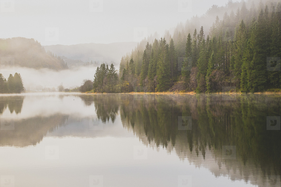 Northern Lights  74