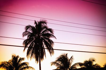 Neon World  09