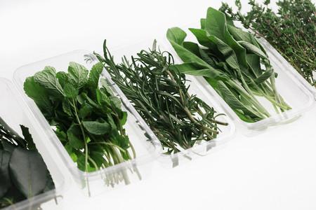 Leafy Greens 03