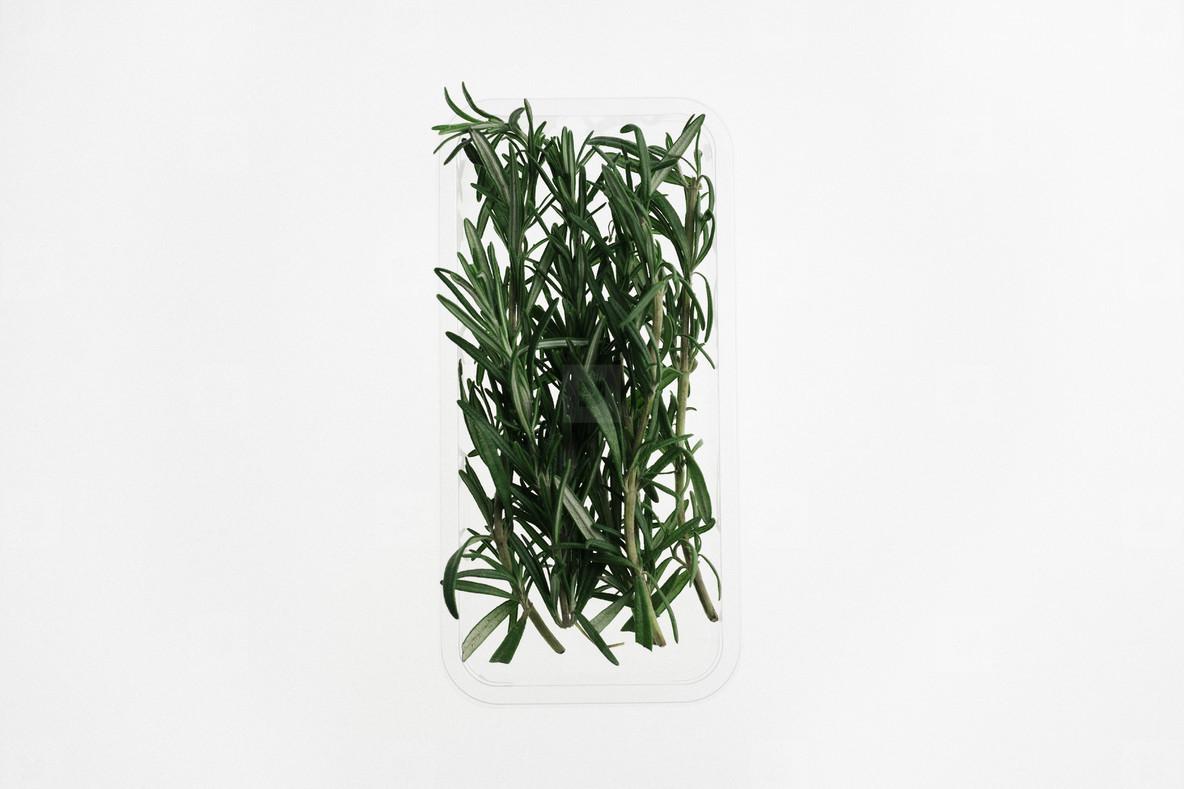 Leafy Greens  09