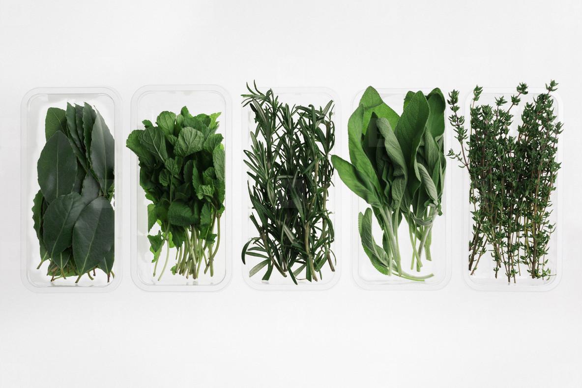 Leafy Greens  13