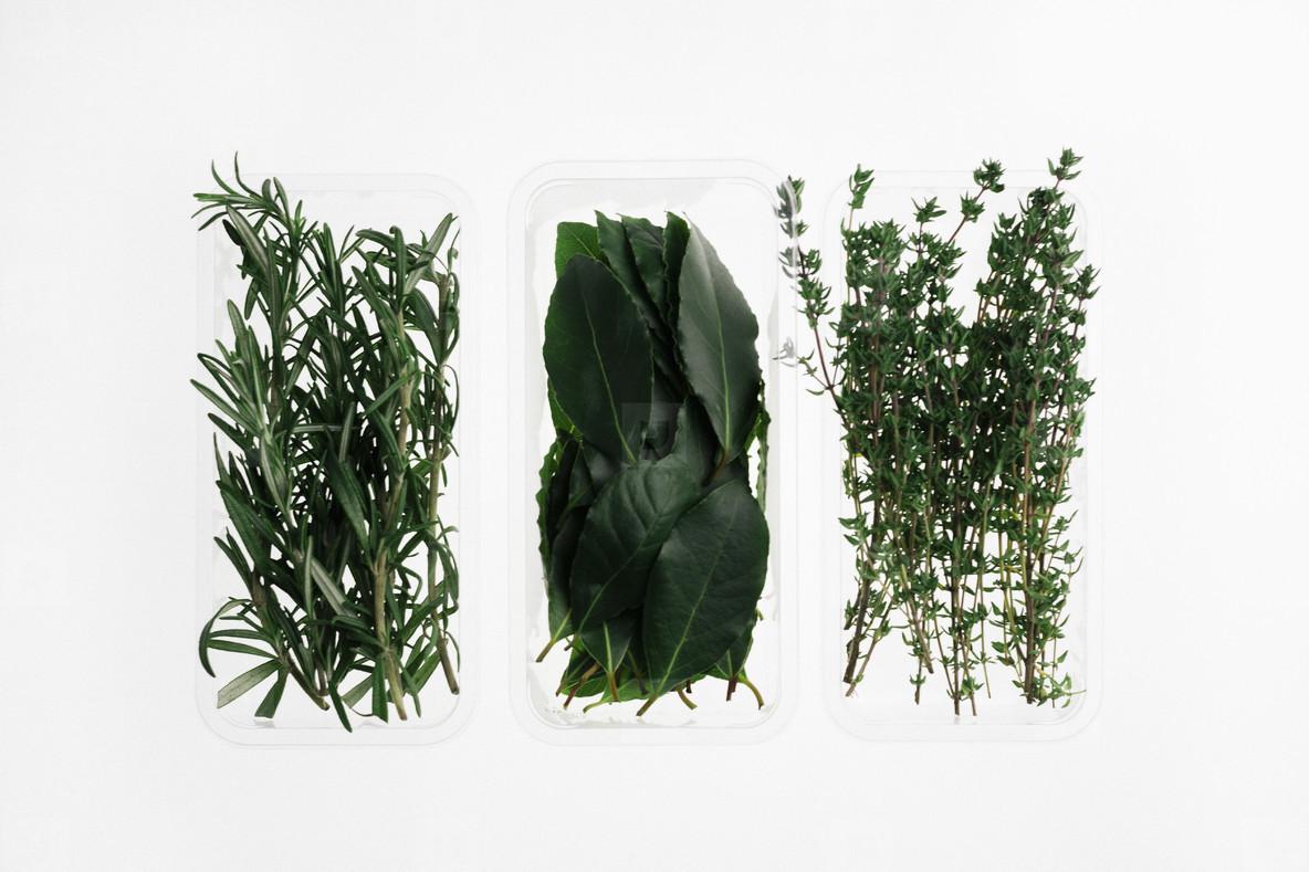 Leafy Greens  17