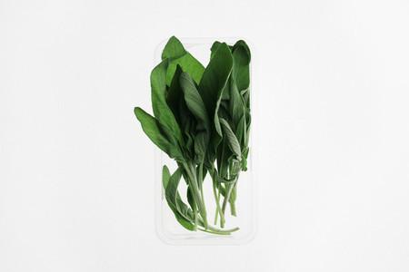 Leafy Greens 20