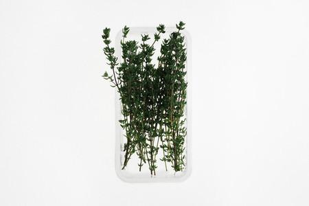 Leafy Greens 21