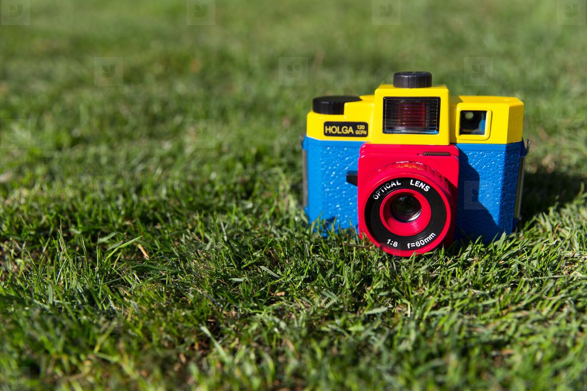 Cute camera in grass