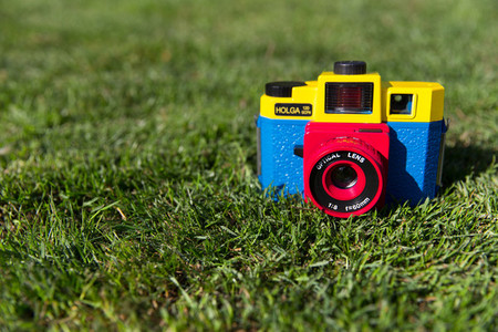 Cute camera in grass