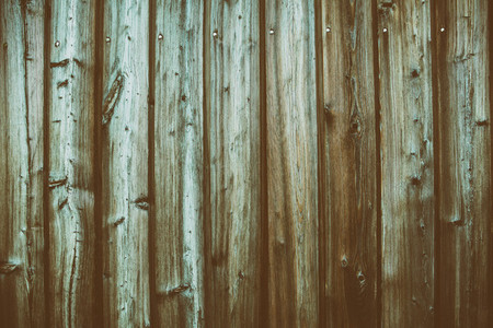 Wood Panels Texture