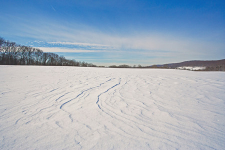 Winter field