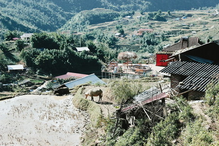 Top view of village  Vietnam  01